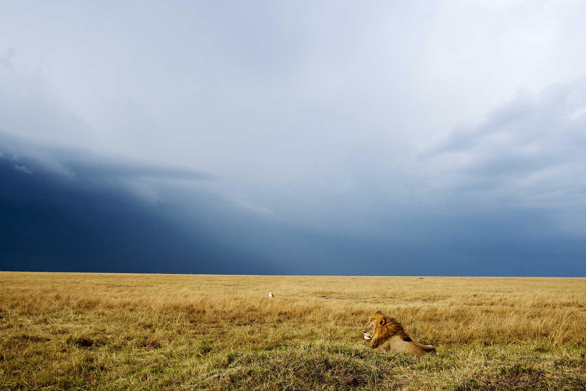 Endlesssafari_Africa61